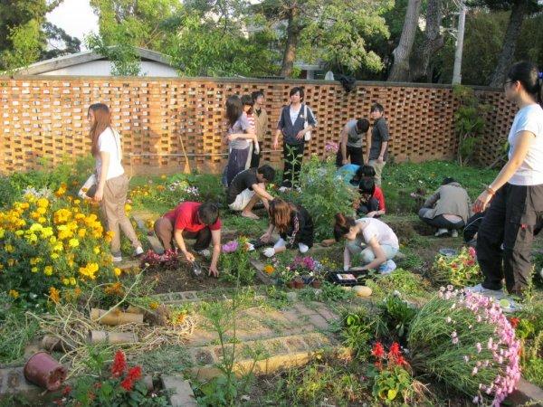 植栽設計課程1.JPG