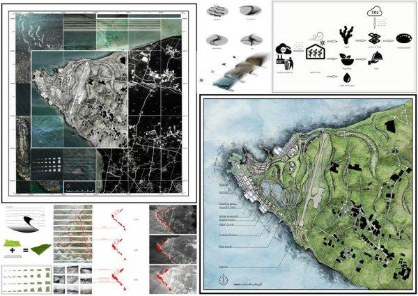 島嶼代謝island metabolism5.jpg