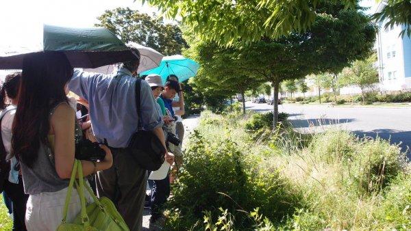 郭老師講解高點社區的雨水花園系統1.JPG