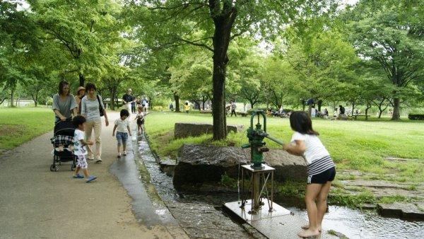 古河總和公園3.JPG