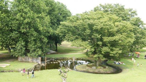 古河總和公園_中村良夫設計監造_以人類的歷史和自然的變遷成為不斷轉變的景觀作為設計的主要構想_提出市民認養維護的園主系統概念.JPG