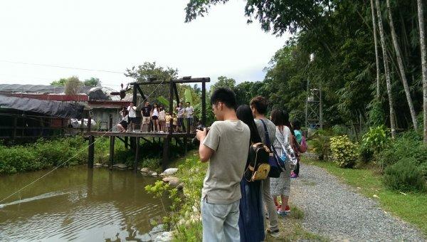 7月25日桃米草湳濕地竹體驗蜻蜓流籠.jpg